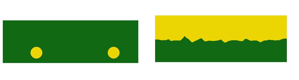 wyse-car-logo3